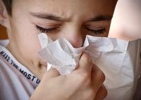 В Севастополе отметили рост заболеваемости ОРВИ, фото — «Рекламы Севастополя»
