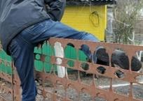 В Севастополе полицейские рекомендуют дачникам выходить на ночные дежурства, фото — «Рекламы Севастополя»