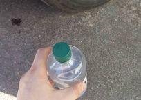 Три ребёнка выпили растворитель в детском саду Севастополя ВИДЕО, фото — «Рекламы Севастополя»
