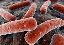 В Севастополе туберкулёзом заболеть может каждый, фото — «Рекламы Севастополя»