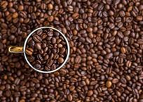 В Крыму построят завод по производству кофе, фото — «Рекламы города Саки»