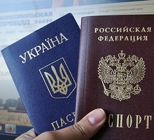 Mini_pasport-800x429-932