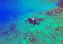 Category_scuba-diver-1049945_960_720