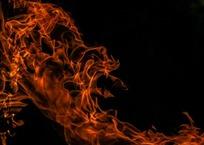 Соцсети: в Ялте две девушки заживо сожгли кота ФОТО, ВИДЕО, фото — «Рекламы Гурзуфа»