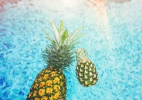 Category_pineapple-1149668_960_720