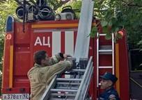 Category_11985_iz-za-pozhara-evakuirovali-zh