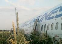 Момент столкновения летевшего в Крым самолета с птицами попал на видео, фото — «Рекламы Севастополя»