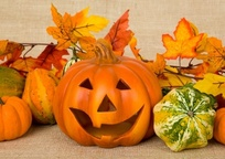Category_jack-o-lantern-and-gourds-1508426084yda