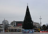 Category_yalta-elkaimg_7694