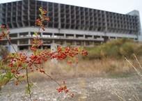 «Вместо науки – Сатана!»: Жители поселка на Южном берегу Крыма против игорной зоны под боком, фото — «Рекламы Приморского»