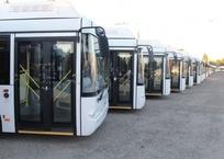 Крым получил 50 новых автобусов для пассажиров, фото — «Рекламы Приморского»