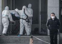 2019-nCoV: доберется ли смертельный китайский коронавирус до Крыма, фото — «Рекламы Севастополя»