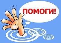 Орет пятый день: москвичи оставили кота умирать без еды и воды в запертой квартире ФОТО, ВИДЕО, фото — «Рекламы Севастополя»