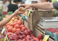 В Крыму на продуктовых рынках введут безналичную оплату, фото — «Рекламы Джанкоя»