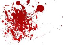 Category_yalta_suicid_proisshestvie_administraciya
