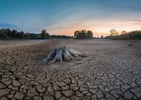 В Севастополе опасаются экологической катастрофы из-за нехватки воды, фото — «Рекламы Севастополя»