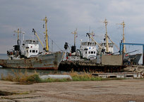 Category_img_9646_d_850