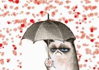 Севастополь вошел в топ-10 городов, ненавидящих День Святого Валентина, фото — «Рекламы Севастополя»