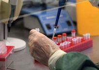 Заболевшая семья из Алушты продолжает находиться в инфекционном отделении Феодосии, фото — «Рекламы Крыма»
