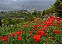 Режим повышенной готовности в Севастополе продлят до июля, фото — «Рекламы Севастополя»