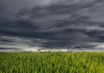Category_clouds-194840_1280