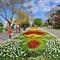 Micro_sevastopol-drowned-in-tulips-06