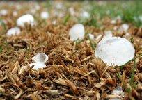 Category_hailstone-1614239_1280-1