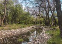 Эксперты утверждают, что июльские дожди не улучшили водную ситуацию в Крыму, фото — «Рекламы Старого Крыма»