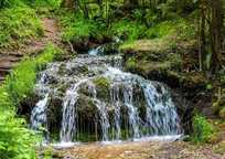 Category_rattlesnake-creek-2749123_1920
