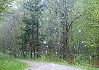 Category_rain-2775032_640