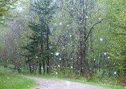 Top_news_rain-2775032_640