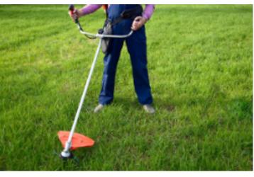 Наш мир садовых инструментов – Ваш сад достоин комплиментов!, фото — «Реклама Севастополя»