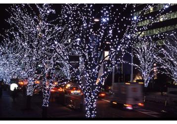 Скоро Новый год!  Выбери  гирлянду и световые украшения по лучшей цене, фото — «Реклама Крыма»