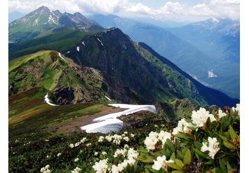 Новогодние туры из Севастополя - Кавказ, Абхазия, Сочи, потрясающие предложения для Вас, фото — «Реклама Крыма»