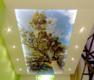 Натяжные потолки в Севастополе и Крыму – компания НатяжнОфф, фото — «Реклама Севастополя»