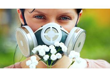 Анализ на аллергию в Севастополе: где можно сдать, фото — «Реклама Севастополя»