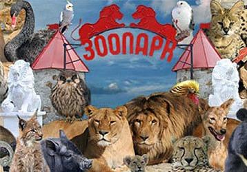 Посетите волшебную страну – ялтинский зоопарк «Сказка», фото — «Реклама Севастополя»